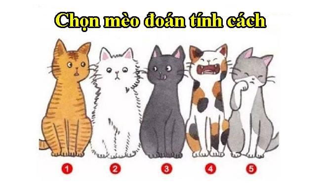 Chọn chú mèo mà bạn thích nhất sẽ bật mí những điều người khác đánh giá về bạn 1